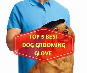 Top 5 Best Dog Grooming Glove Reviews In 2018