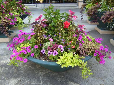 Garden Designers Roundtable Containers  Garden Share Bristol