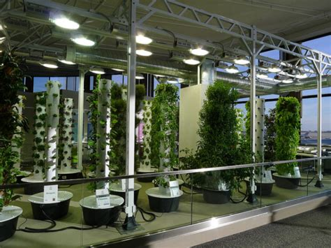 Indoor Garden Lighting System o hare airport s vertical aeroponic garden takes flight