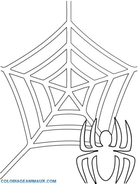 coloriage toile d araign 233 es 224 imprimer