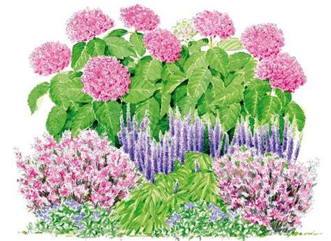17 meilleures id 233 es 224 propos de am 233 nagement paysager d hortensia sur hortensias