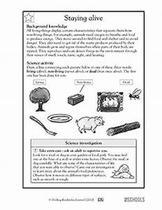 Free Worksheets Library   Download and Print Worksheets ...