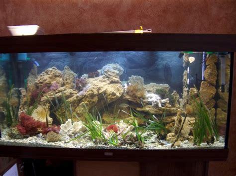 archives l aquarium eau de mer m 233 dit 233 rran 233 e jeanluc83