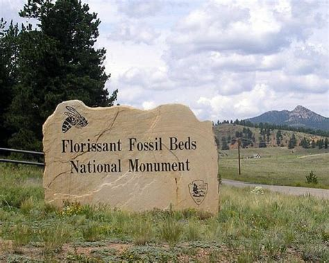 florissant fossil beds florissant water and sanitation district gets revived