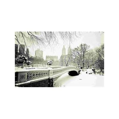 Winter in Central Park wallpaper - Unsorted Other
