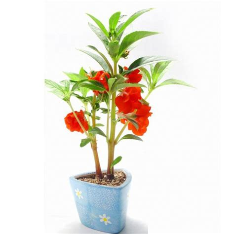 handicraft cheap plant pots business gifts large plastic plant pots gifts for children buy