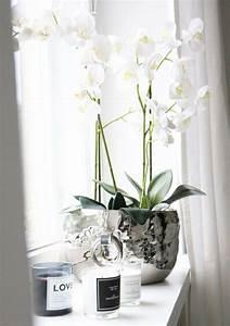 Fensterbank Dekorieren Wohnzimmer : die besten 25 fensterbank dekorieren ideen auf pinterest after effects projekte ~ Markanthonyermac.com Haus und Dekorationen