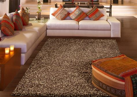 Best Rug For Living Room : Best 10 Adorable Shag Area Rugs For Chic Living Room
