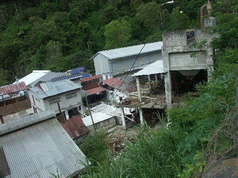 Mavis Bank Coffee Factory Blue Mountains Jamaica