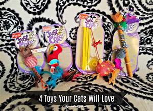 4 Toys Your Cats Will Love | Pawsitively Pets