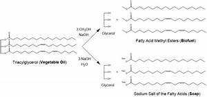Solved: When Conducting A Transesterification, The Reactio ...