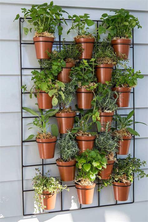 Kräuter Auf Dem Balkon Pflanzen  Wie Legt Man Einen