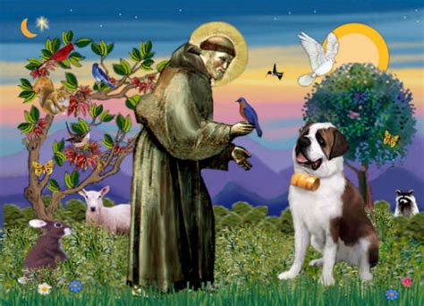 my connection to animals and st francis practical spirituality