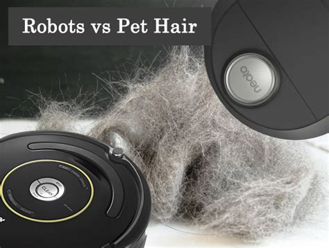100 roomba wood floors hair neato vs roomba u2013 which is the best robot vacuum home