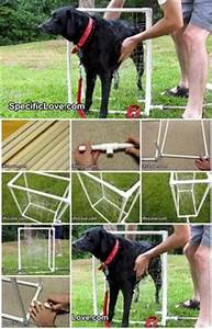 1000+ ideas about Dog Wash on Pinterest | Dog Washing ...