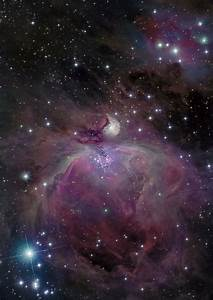 M42 - Orion Nebula | Astronomy Images at Orion Telescopes