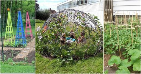 Garden Types : 20 Diy Garden Supports For Every Type Of Plant