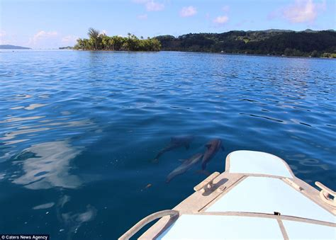 Bow Of A Boat In French by French Polynesia Island Motu Tiano Goes On Sale Daily