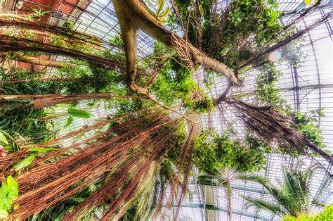 Botanische Gärten  Botanischer Garten