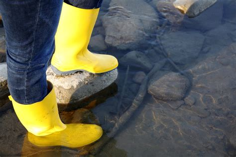Rubber Boot Water by Rubber Boots River Water 183 Free Photo On Pixabay
