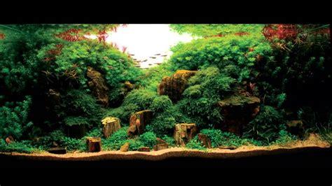 les plus beaux aquariums aquascaping