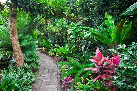 Tropical Gardens-articles