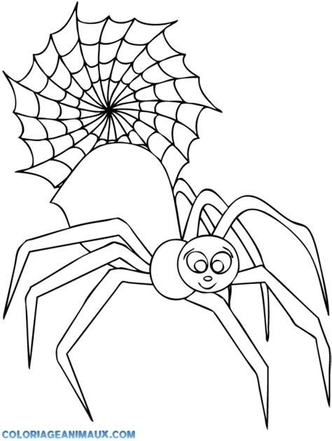 coloriage une araign 233 e fait sa toile 224 imprimer