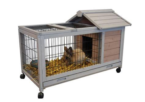 cage cochon d inde interieur exterieur dunland animaloo