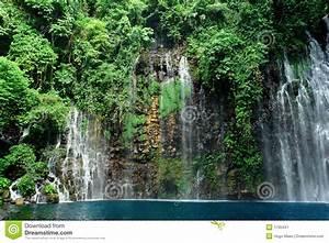 Teich Mit Wasserfall : tropischer wasserfall im dschungel lizenzfreie stockfotografie bild 1705447 ~ Markanthonyermac.com Haus und Dekorationen