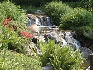 Pflanzen Japanischer Garten Anlegen : japanischer garten anlegen g nstig vom gartenbauer ~ Markanthonyermac.com Haus und Dekorationen