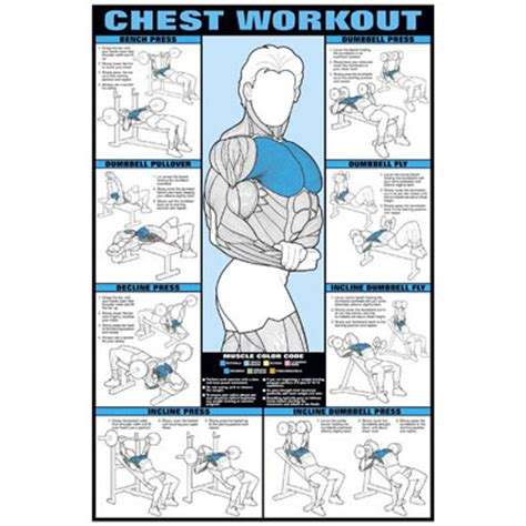 at home chest exercises chest exercise at home search results calendar 2015
