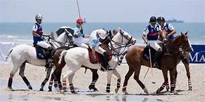 Chinese elite are spending on equestrian sports - Business ...