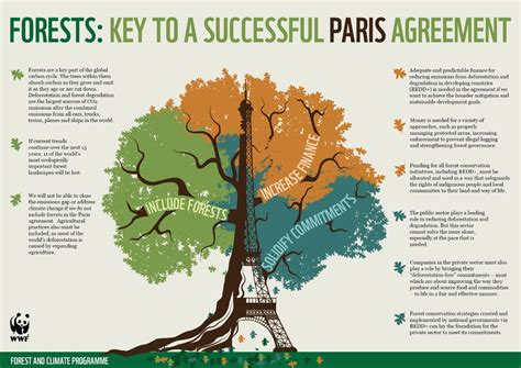 Cop21 Gives Forests Strength To Stand Against Climate