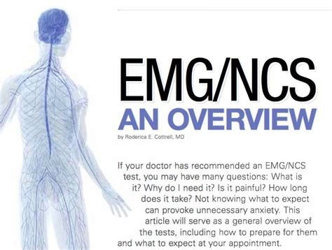 Emgncs An Overview Electromyograms And Nerve Conduction. Houston Tx Roofing Contractor. How Much Does It Cost To Refinance A House. Police Officer As A Career 79 Toyota Corolla. Bachelor S Degree In Education. Free Advertising For Business. Best Home Monitoring System Solar Fresno Ca. International Credit Check Html File Uploads. Best Dog Food Allergies Berkshire High School