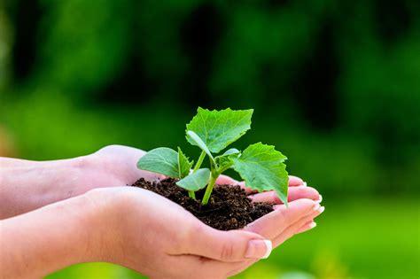 Garten Und Landschaftsbau Gehalt, Studium, Ausbildung Und