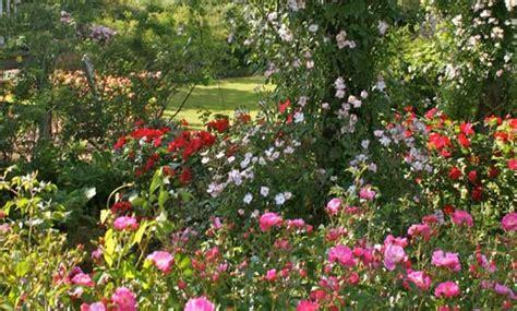 les chemins de la jardin en pays de la loire situ 233 224 doue la fontaine en maine et loire 49
