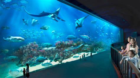 buy s e a aquarium admission ticket best price guaranteed sea aquarium sentosa deals for only