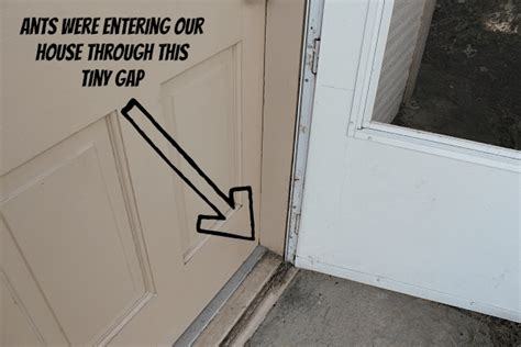 Installing Weather Stripping Around Exterior Doors Best Canadian Mattress Sale Spokane Special Disposal Kansas City Brand Ratings Comfort Source Natural Twin Mold Cleaning