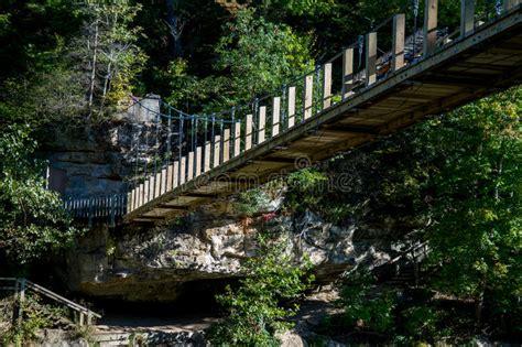 Bridge At Turkey Run Park Stock Image. Image Of Turkey
