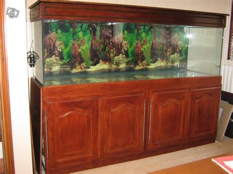 achat de mon aquarium 700 litres aquarium eau de mer initiation