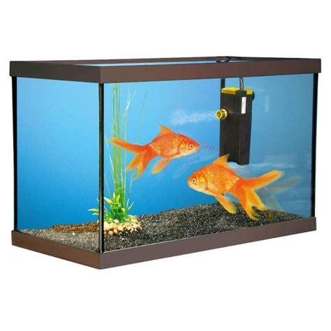 aquarium kit poissons rouges 40x20x15cm achat vente aquarium aquarium kit poissons