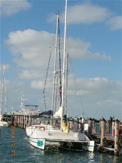 Catamaran Echo Key West Florida by The Echo Picture Of Catamaran Echo Key West Tripadvisor
