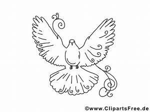 Kinder Bilder Malen : bilder selber malen vorlagen vogel taube ~ Markanthonyermac.com Haus und Dekorationen