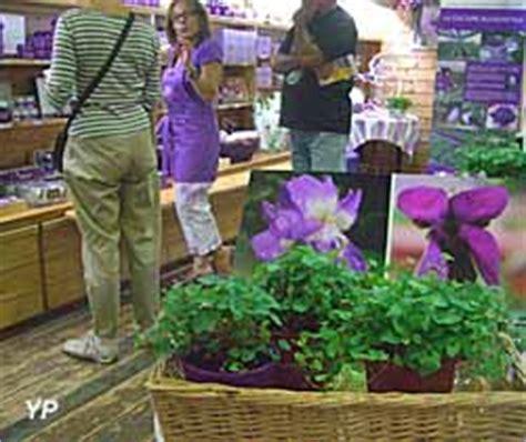 maison de la violette toulouse journ 233 es du patrimoine 2016