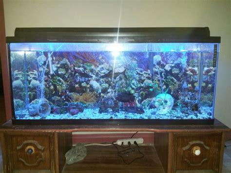 revger decoration bouddha pour aquarium id 233 e