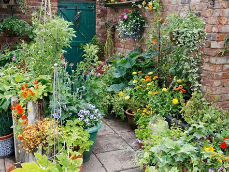 How To Plant A Patio Container Garden Hgtv