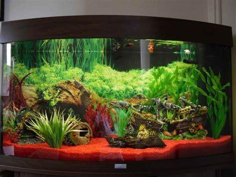 17 best ideas about fish aquarium decorations on aquarium fish tanks and aquarium ideas