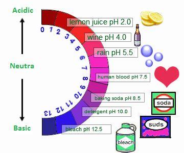 Acids Bases And Salts  Properties, Arrhenius Concept, List Of Acids Chemistry@tutorvistacom