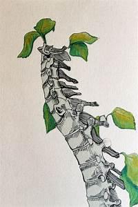 Grow a Backbone - Spine Art Print | Anatomía, Medicina y ...