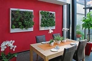 Pflanzen Für Wohnzimmer : ein dschungel f rs wohnzimmer echte pflanzen ersetzen die tapete haus garten rhein neckar ~ Markanthonyermac.com Haus und Dekorationen